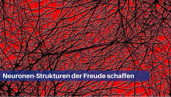neuronen struktur freude zr 564