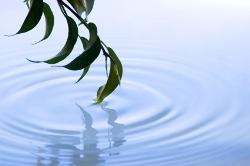 Leitfaden: Kraft und Klarheit tanken