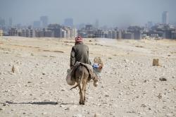 Leitfaden: Eselsbrücken erfolgreich nutzen