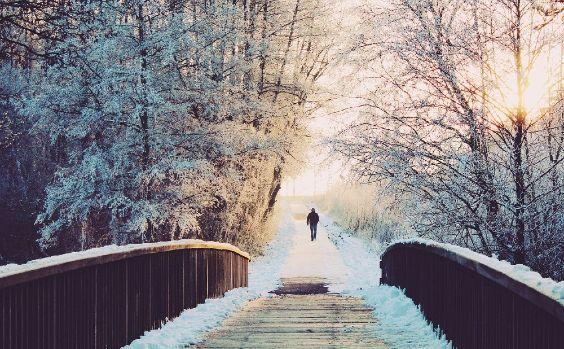 Der Winter ist oftmals trübe und diesig