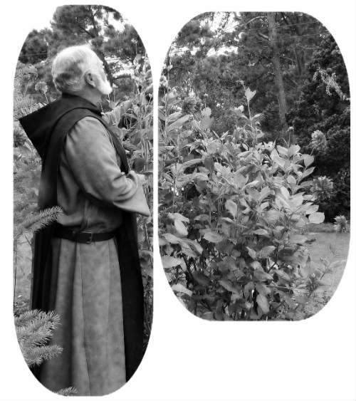 Mönch im Garten
