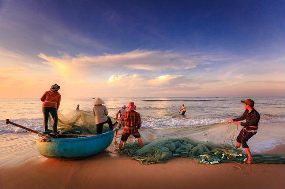 fischer arbeit netze sunset 564