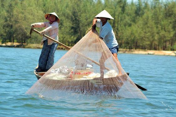 fischer vietnam 564