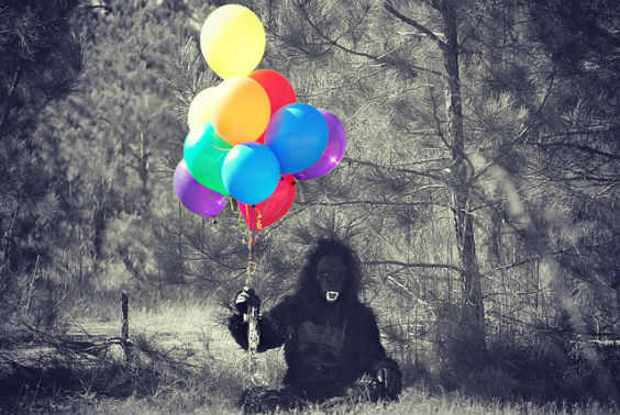 gorilla lufballons sw 564