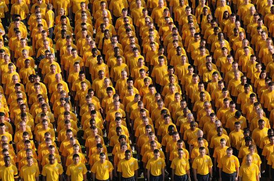 gruppe gelb viele 9x 564