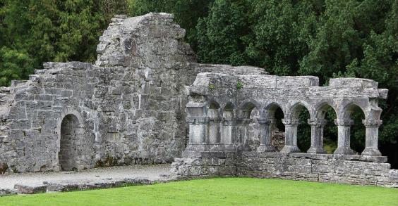 irland ruine 564
