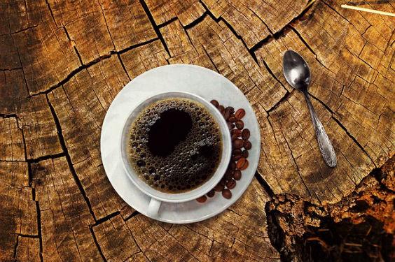 kaffee baum 0p 564