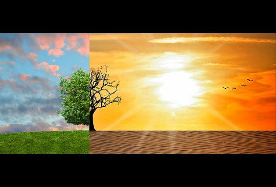 klimawandel gruen wueste nt 564
