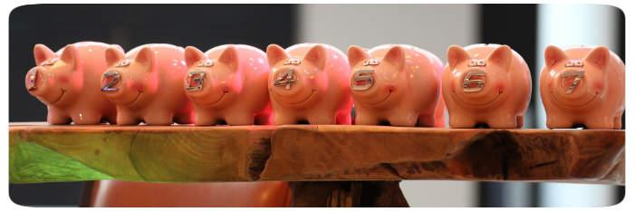 Sieben Schweine
