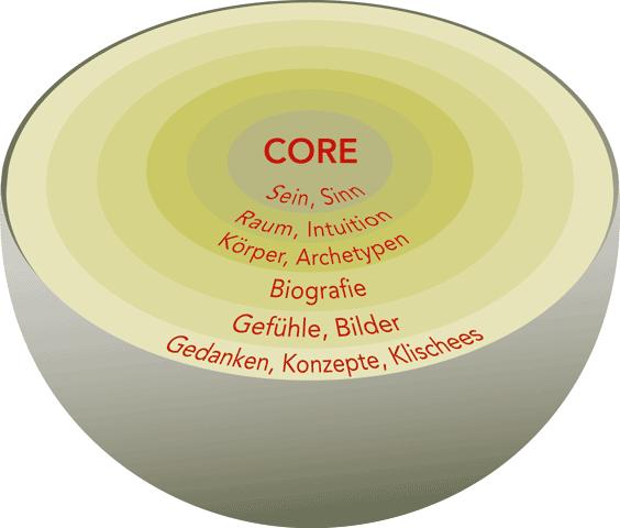 coredynamik 564